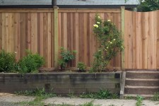 Cedar Capped Board Fence