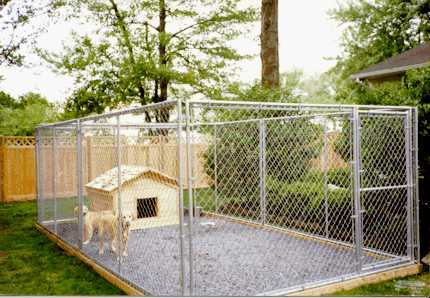 Chain Link Dog Enclosure