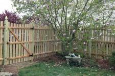 Cedar Space Board Fence