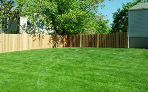 Solid Cedar Board Fence